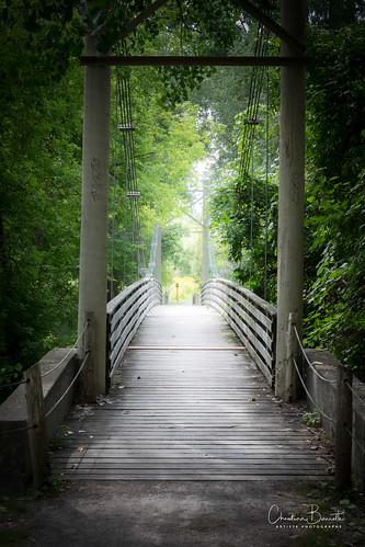 La parole d'un ami est un pont/The word of a friend is a bridge/En väns ordet är en bro