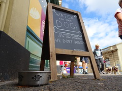 (Balticson) Tags: teignmouth devon seaside dogs shops pavement waterfordogs chalkboard aframesign