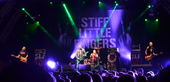 Stiff Little Fingers (conall..) Tags: slf stifflittlefingers stiff little fingers concert live music custom house square belfast