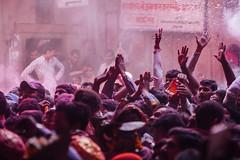 Gulal in Air, Shri Banke Bihari Mandir (AdamCohn) Tags: abeer adamcohn bankebiharimandir hindu india shribankeybiharimandir vrindavan gulal holi pilgrim pilgrimage अबीर गुलाल होली