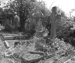 IAW_6379 (IanAWood) Tags: cemeteryclub cemeteryfriends cemeteryparks fortunegreen graveyards hampsteadburialboard hampsteadcemetery headstonehunting lbofcamden london londonsdead londonsvictoriancemeteries necropolis nikkorafs24mmf14g nikond810 walkingwithmynikon