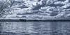 Summer mood... (.: mike | MKvip Beauty :.) Tags: sony⍺7markiii sony⍺7iii sonyilce7m3 sonyalpha7m3 sonyalpha sony alpha emount ⍺7iii ilce7m3 ibissamyangfe35mmƒ14as samyang 35mm ƒ14 af handheld availablelight naturallight dreamy soft zen nature blue lake water reflections clouds sky summer monochrome monochrom blackwhite blackandwhite bw blancetnoir schwarzweis sw lauterbourg france mth mkvip ibissamyangfe35mmƒ14asifumcaf ngc npc