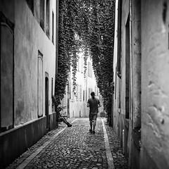The alley (Caropaulus) Tags: blackwhite alpha7 minolta rokkor silhouette pavement pavés strasbourg