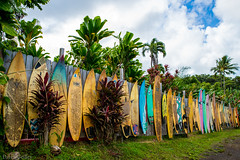 Fence Friday Maui Style (Daren Grilley) Tags: maui hawaii road hana jaws country store surfing surfboard nikon d850