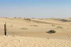 Desert in UAE (Piotr Kowalski) Tags: dubai uae unitedarabemirates emirates dunes sand piasek pustynia dubaj emiraty wakacje summer activity