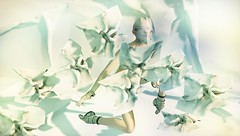 Paper Dancer (tralala.loordes) Tags: tralalaloordes tralala tra secondlife sl virtutalreality vr avata avatar dancer paper paperdancer ballet ballarina dancing azoury dwhc flickrart slartblogging blogging fashion newreleasesl zibska meshcow