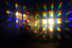 DSC06862 (homo_erectus) Tags: wareham 2016