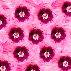 the florniverse (m_laRs_k) Tags: flora 7dwf hss blume bloem mannheim luisenpark olympus omd