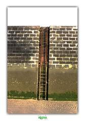 A LADDER LEADING NOWHERE (régisa) Tags: pharedesaintpol dunkirk dunkerque ladder échelle jetée diguedubreak absofacto
