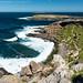 180917_Kangaroo_Island_7830.jpg
