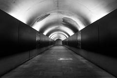 The path (petia.balabanova(tnx for +3 million views)) Tags: blackandwhite bw monochrome malaga spain andalusia travel nikond800 2470mm lights architecture path subway lines arche shapes geometry symmetry