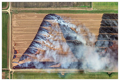 Agriculture #23 (The Amazing Mr. Ripley) Tags: aerial fire rice crop