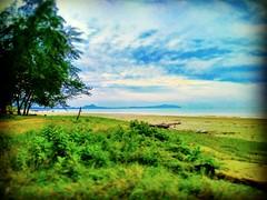 Beserah, Kuantan, Pahang https://goo.gl/maps/owctV34jxeR2 #vakantie #reizen #voyage #viaggio #viaje #Semester #Fiesta #Vacanza #Vacances #Plage #Strand #Spiaggia  #Reise #Urlaub #playa  #bomen #albero #Baum #Baum #árbol #Asian #Malaysia #Kuantan #travel # (soonlung81) Tags: trip วันหยุด vacanza beach путешествие malaysia 휴일 vakantie 馬來西亞 пляж 旅行 nature spiaggia reise pantai semester kuantan ชายหาด bomen 여행 albero asian plage voyage reizen 海滩 strand 바닷가 度假 traveling baum ビーチ urlaub ホリデー การเดินทาง праздник holiday playa árbol 亞洲 vacances fiesta viaggio viaje travel