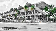 Marine Stadium - Miami (xtaros) Tags: marinestadium marine stadium miami florida xtaros blackandwhite black white bw concrete palmtree palm tree trees green yellow building geometry