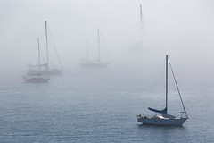 5IMG3520 Boats moored in PT Bay (Glenn Gilbert) Tags: sea bay puget sound porttownsend mist fog water landscape seascape washington boat ship sail wood sky cloud
