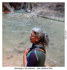 2D-TheNarrows-091 (stereo_eyz) Tags: zion nationalpark utah virginriver hiking canyon rock water narrows