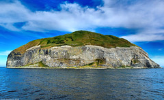 Scotland West Coast the cliffs of the island of Ailsa Craig white with thousands of breeding seabirds 1 July 2018 by Anne MacKay (Anne MacKay images of interest & wonder) Tags: scotland west coast sea cliff cliffs island ailsa craig white thousands breeding seabird seabirds 1 july 2018 picture by anne mackay