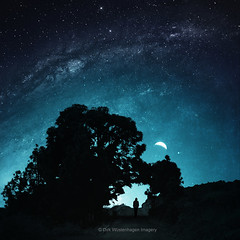the Arc of stars (Dyrk.Wyst) Tags: canaryislands kanarischeinseln lapalma roas male silhouette treearc stars cosmos nightscene composite space crescentmoon teal blue mood landscape photomanipulation