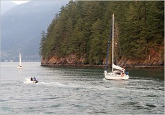 Bowen Island Snug Cove BC18h36 LG (CanadaGood) Tags: canada bc britishcolumbia bowenisland sea howesound sailboat boat tree shore canadagood 2018 thisdecade color colour cameraphone