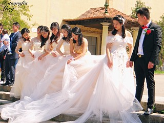 The bride and groom and the bridesmaids.