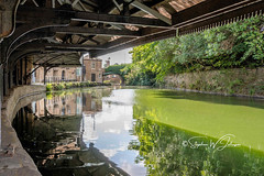 DSC_0148 - Burnley Wharf (SWJuk) Tags: swjuk uk unitedkingdom gb britain england lancashire burnley home industrial industrialrevolution wharf burnleywharf cotton kingcotton canopy canal leedsliverpoolcanal flat calm reflections trees overhanging water waterscape landscape building tolloffice 2018 aug2018 summer d7200 nikond7200 nikon 18300mm rawnef lightroomclassiccc