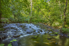 Rivelin Waterfall (Andrew Brammall Photography) Tags: weir waterfall rivelin sheffield yorkshire water industrial architecture history lost trees green forest secret