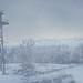 TheHunter: Call of the Wild / Snowy Haze