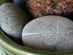 Still Life With Rocks (Sarah_ES) Tags: rocks smooth curves macromondays rock