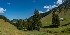 Panorama Untere Euschels (Switzerland) (christian.rey) Tags: jaun friburg suisse ch untere euschels schwarzsee lacnoir fribourg paysage landscape freiburg préalpes fribourgoises montagnes alpages mountains swiss sony alpha a7r2 a7rii 24105 panorama assemblage