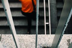Orange Dash (ewitsoe) Tags: 35mm cityscape ewitsoe nikond80 street warszawa erikwitsoe people summer urban warsaw orange person climbingstairs stairs subway underground city bars rails metal lookingdown perspective dof alive life living soul charming attitude ambience atmosphere space