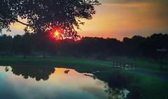 Lake&Sunset (ccps2266ivan) Tags: 日常 攝影 夕陽 湖 屏科大 台灣 pingtung taiwan instagram if instagood nikon camera photography photo like4like f4f life dream happy love sunlight sunshine sunset sun asuszenfone5z asus5z asus