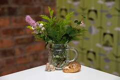Things. Memories. (Brian Heys) Tags: diary wallpaper ferns jug bricks memories green