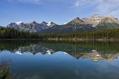 Herbert Lake, Banff National Park, morning (birgitmischewski) Tags: herbertlake banffnationalpark