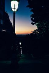 Street Lamps at Dawn (laurenspies) Tags: clignancourt paris îledefrance france europe montmartre paris18earrondissement fr lights streetlamps streetlights staircase stairs sunrise dawn