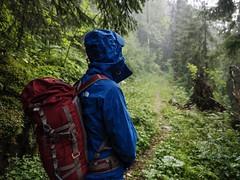 La Gruyère - Charmey / Ref.02311 (FRIBOURG REGION) Tags: berg fribourgregion landschaft charmey fribourgrégion montagne suisse paysages préalpes randonnée été grandtourdesvanils prealps voralpen pluie rain regen lagruyère sommer wandern schweiz landscape hiking switzerland morteys mountain valdecharmey fribourg ch