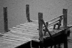 6Q3A3965 (2) (www.ilkkajukarainen.fi) Tags: laituri dock blackandwhite mustavalkoinen monochrome karjala suomi joensuu finland koli eu europa scandinavia finlande happy life penkki lake järvi travel travelling visit