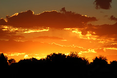 Sunburst (Let Ideas Compete) Tags: sunrise clouds dawn earlymorning silhouette backlit sky orange red colorfulsky blazingsky theskyisonfire spectacularsky stunningsky