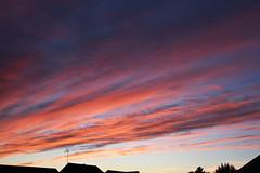DSC_1622 (PeaTJay) Tags: nikond750 reading lowerearley berkshire nightsky sky outdoor cloud sunset dusk