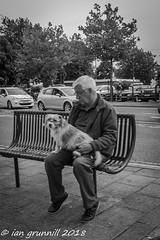 sit (ian grunnill) Tags: dog man bench seat street boston town bw