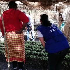 Mission PBF conjointe PNUD-OIM-HCR entre le Burundi et la Tanzanie (pnud.burundi) Tags: pbf grandslacs transfrontalier cadrestratégiquerégionaldesnationsunies glrsf crossborders greatlakesregionalstrategicframework oim subsistance pnud unhcr burundi tanzanie gisuru ruyigi bi