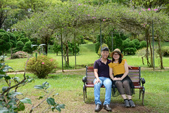 _DSC6369 (Quyr) Tags: dalat vietnam green smoke frog cloud tree forest langbiang lamdong portrait thunglungvang duonghamdatset