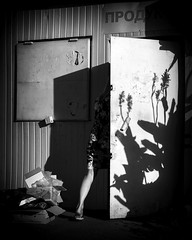 seller girl is going home (Pomo photos) Tags: girl woman people window door market shadow abstract letters evening light olympus epl8 street candid alone city urban town blackandwhite blackwhite bw monochrome mono square lines geometry plant metall paint rust boxes rubbish art formalism lumix20mm