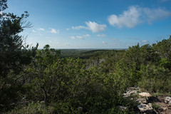Hill Country View - Government Canyon State Natural Area - Bexar County - Texas - 13 August 2017 (goatlockerguns) Tags: live oak government canyon state natural area bexar county texas park usa unitedstatesofamerica nature south southern southwest forest woods trees tree trail hiking hillcountry