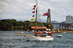 Stina Mari - Norge - 1914 - 13.6m (pserigstad) Tags: stavanger rogaland norge stavangerhavn tallshipstavanger2018 nikon nikond5300 d5300 tamron16300 tamron