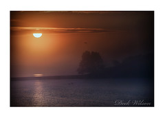 Misty Sunrise (Deek Wilson) Tags: islandhill sunrise strangfordlough ardspeninsula newtownards comber silhouette northernireland