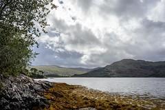 Loch Sunart, Ardnamurchan, Scotland