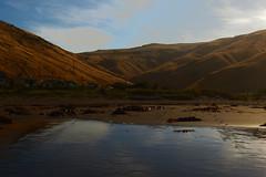 mistaken (Jerryhattric) Tags: boulderbay taylorsmistake bankspeninsula newzealand nz panasoniclumixdmcfz200 summer