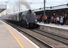 60009 Union of South Africa on 5Z21 Southall to Norwich ECS at Ely  07-09-2018 (MIKE CLARKE PHOTO STREAM) Tags: union south africa class a4 steam locomotives ely station