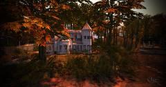 The Four Villages - New Resedential Sim (☀Vita Camino☀) Tags: sl vitacamino texture ground four villages sim terrain secondlife