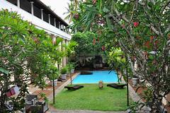 Galle - Fort Hotel Garden (Drriss & Marrionn) Tags: travel srilanka ceylon southasia outdoor seaside tropics coastline galle coast sea galleforthotel pool swimmingpool building buildings hotel cultureheritage
